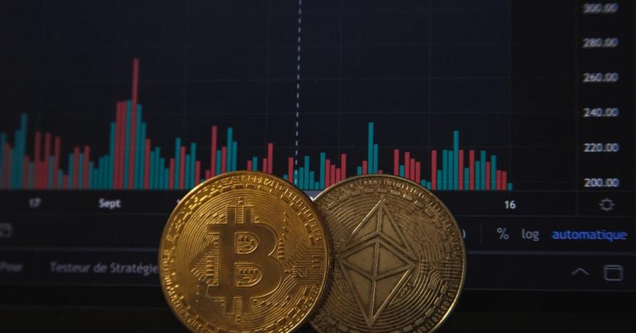 Bitcoin-Glücksspiel steigt nach der letzten PayPal-Ankündigung